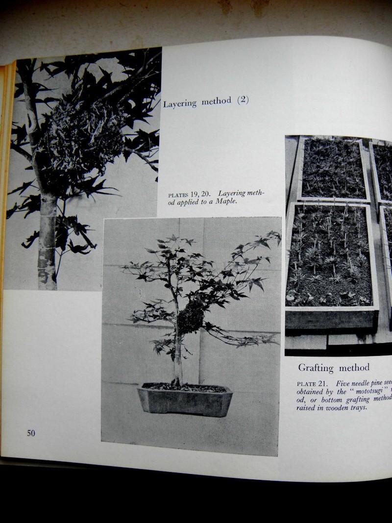 Mes premiers livres Pb260411