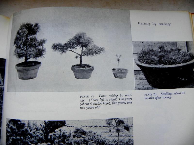Mes premiers livres Pb260412
