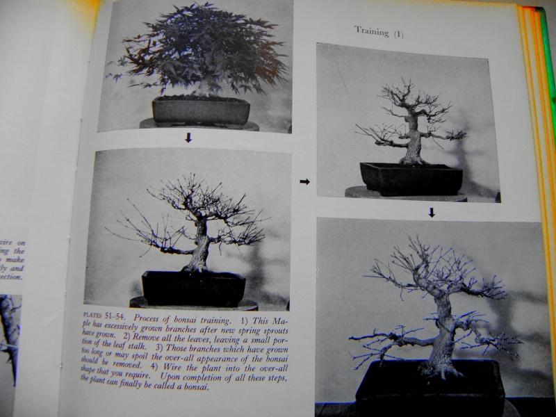 Mes premiers livres Pb260413