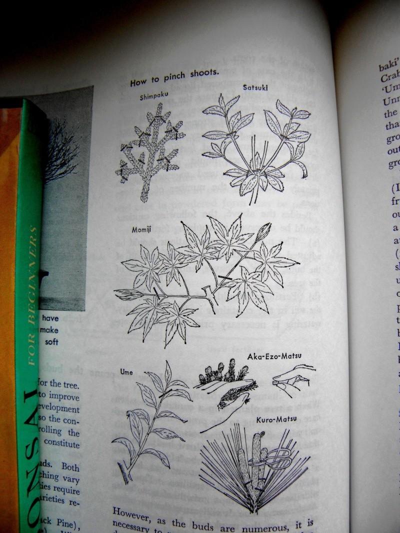 Mes premiers livres Pb260415