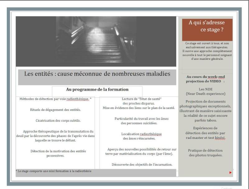 LES ENTITES Stage_11