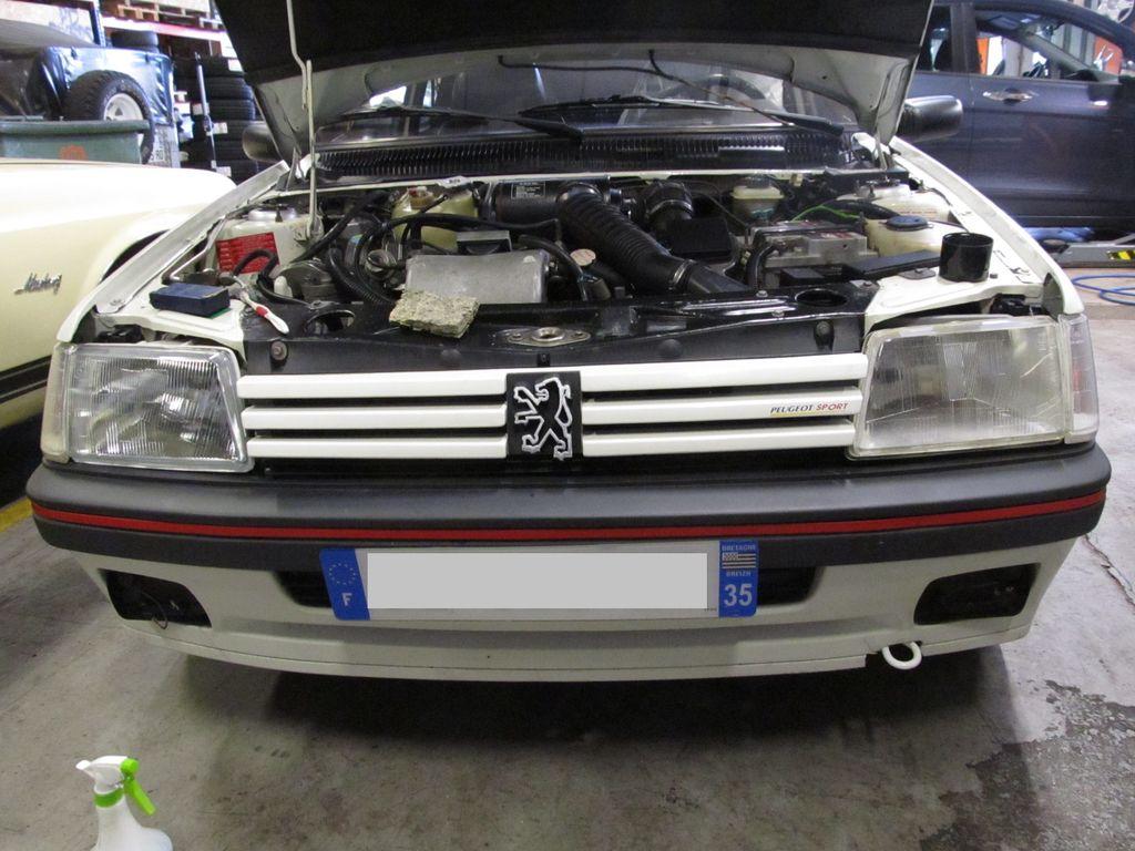 [73] 205 GTI 1L9 - 122cv - AM93 - Blanc Banquise Img_5113