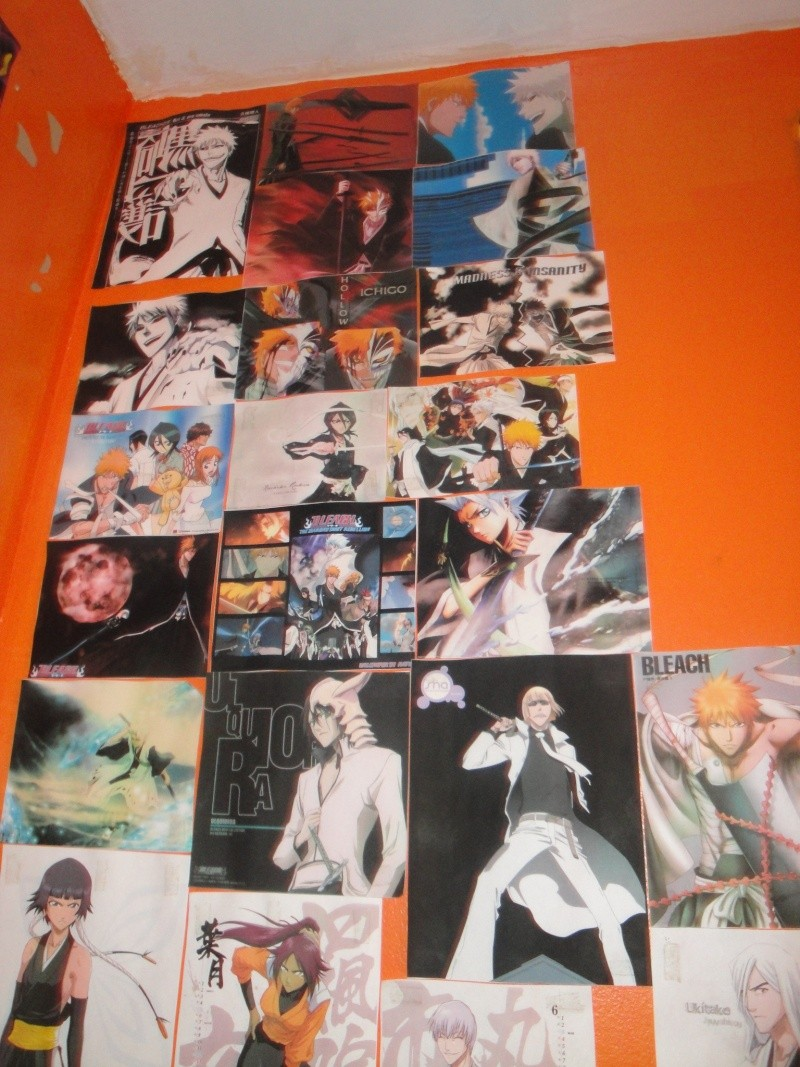 My Anime wall and wallscrolls as of now Dsc01310