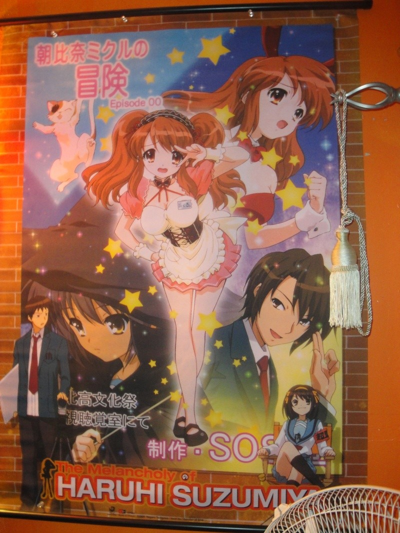 My Anime wall and wallscrolls as of now Dsc01312