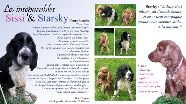 SISSI et STARSKY Insepa11