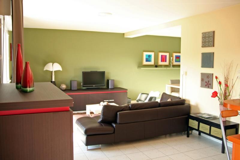 Conseil peinture/aménagement Salon/cuisine ouverte 30564210