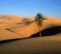paisajes deserticos Sahara10