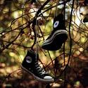 zapatos*** Zapato37
