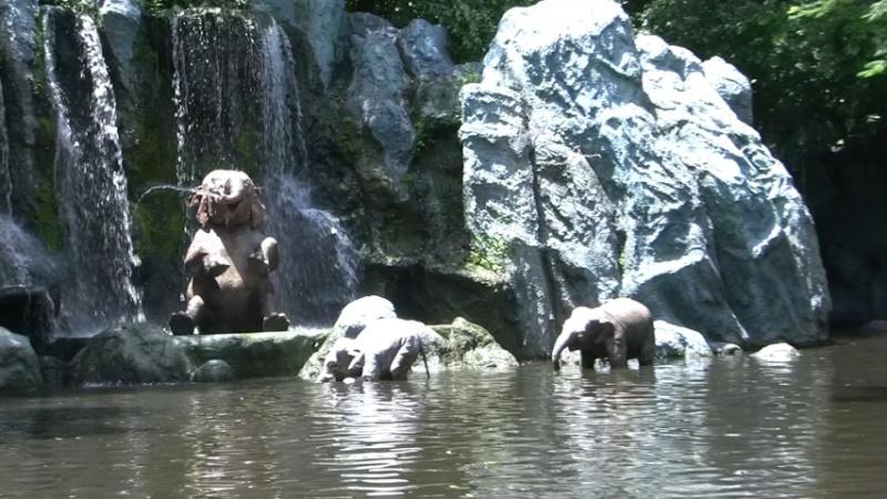 [Walt Disney World Resort] Mon Trip Report est enfin FINI ! Les 29 vidéos sont là ! - Page 10 0120ao27