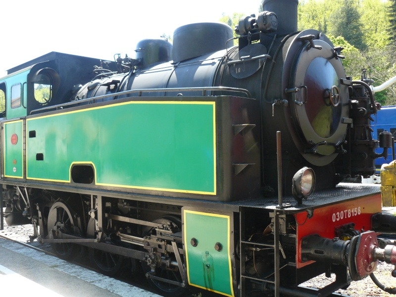 bambouseraie d anduze  train des cevennes P1010117