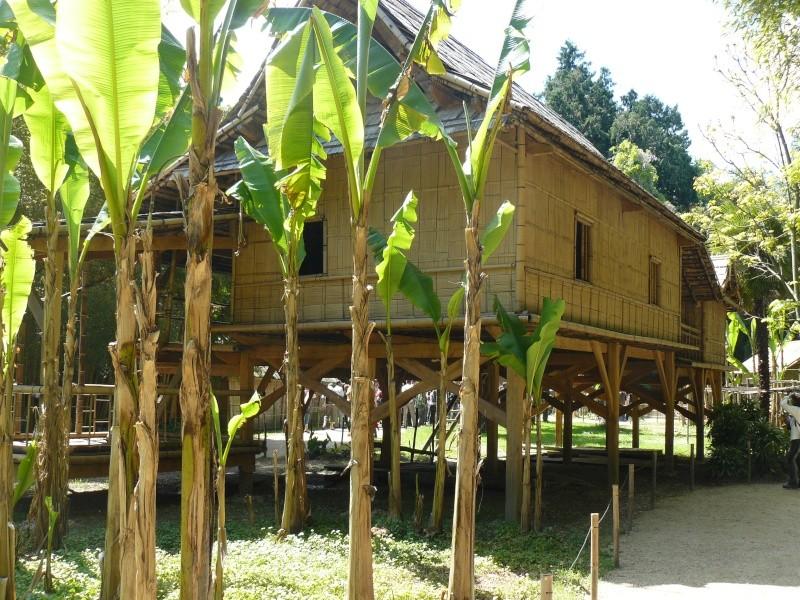 bambouseraie d anduze  train des cevennes P1010121