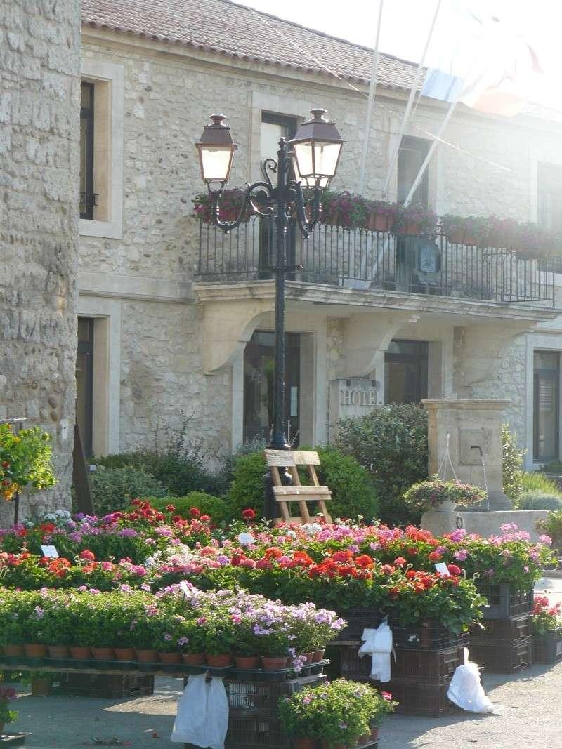 floralie 2009 P1010136