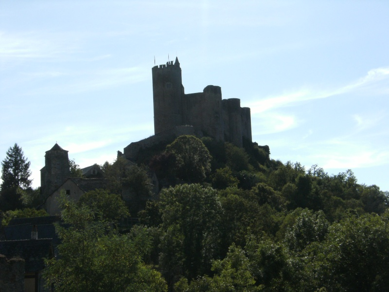 Najac, commune touristique de l'Aveyron Dscf0225