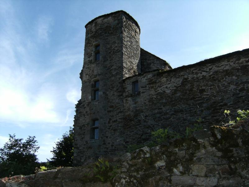 Najac, commune touristique de l'Aveyron Dscf0229