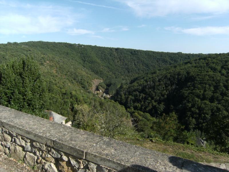 Najac, commune touristique de l'Aveyron Dscf0235