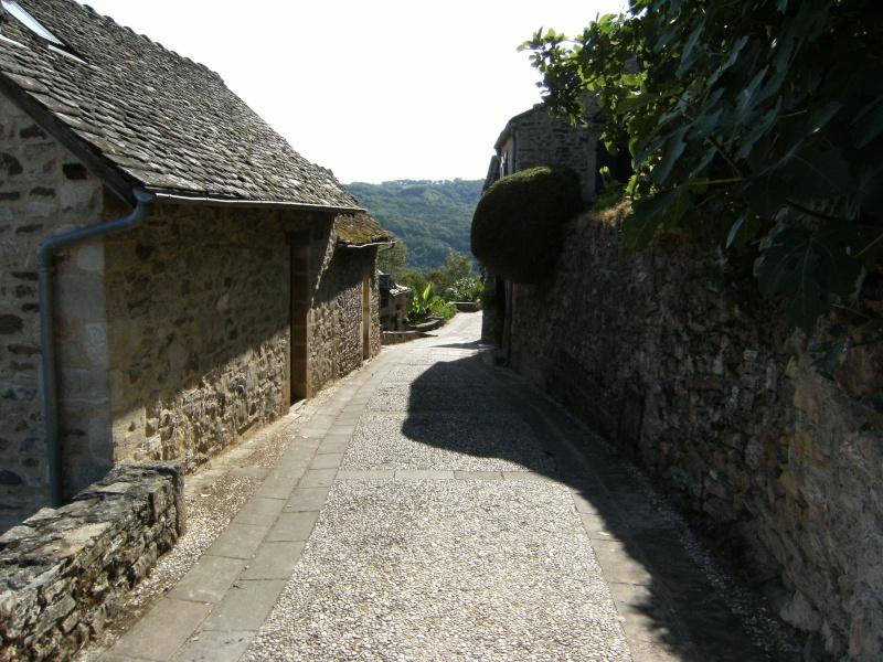 Najac, commune touristique de l'Aveyron Dscf0237