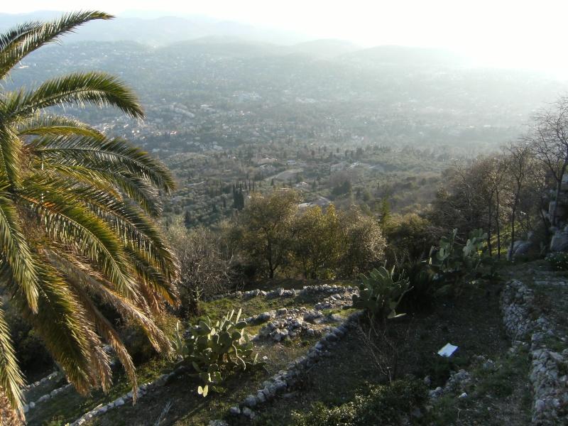 Alpes-Maritimes 4: Cabris Minett17