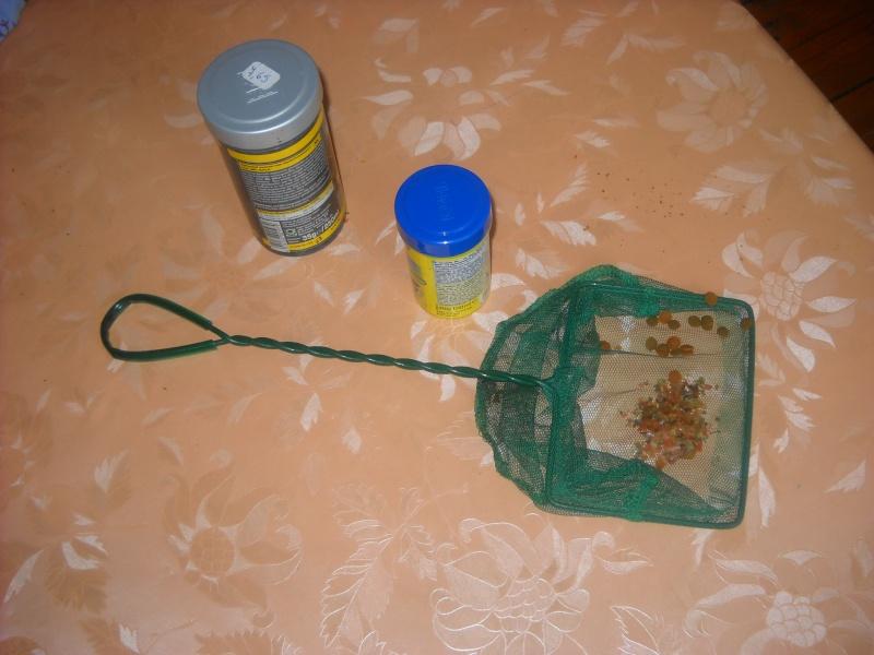 Astuce pour le contrôle des nitrites. Dscn1010