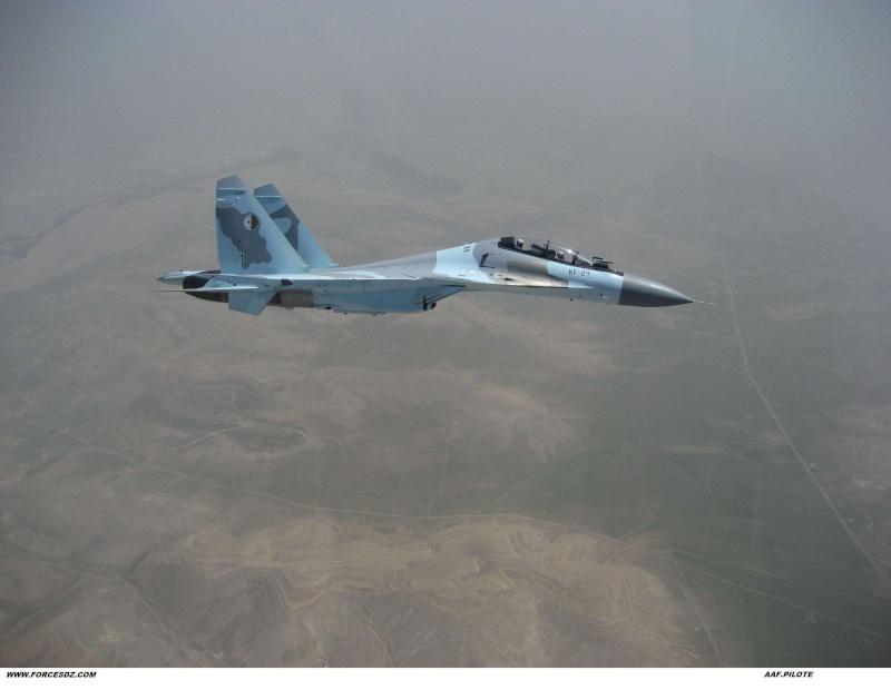 Chasseur Su-30MKA - Page 3 Img25911