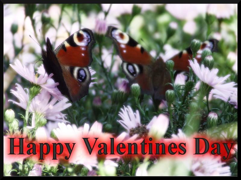 happy valentine's day Val10
