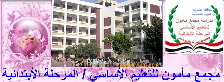 مدرسة مجمع مأمون للتعليم الأساسي ( ب )