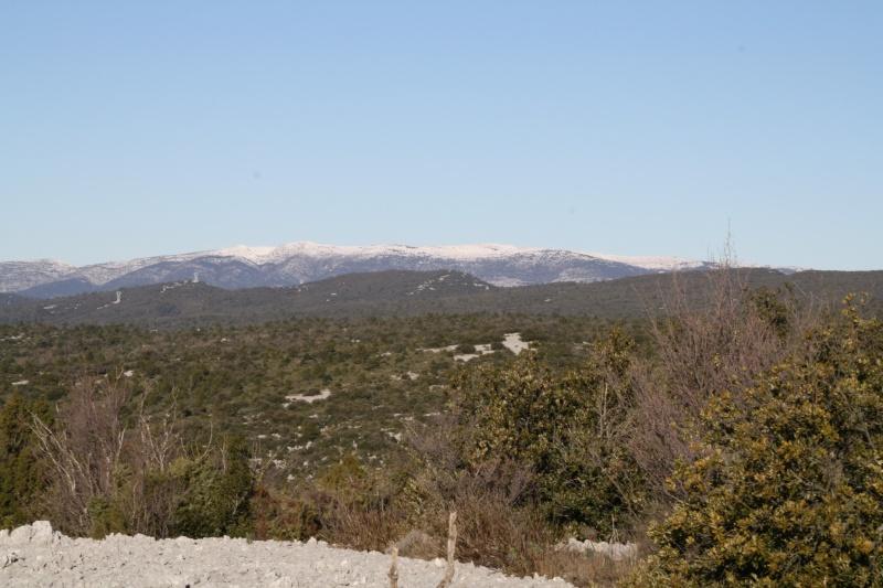 Plateau de Siou Blanc le 18.12.2010 Img_1153