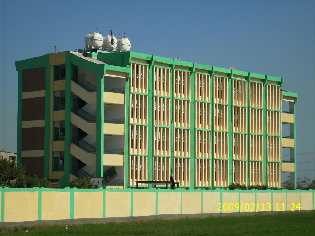المنتدى الرسمي لمدرسة أورمان طلخا