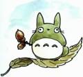 Du côté de chez Gigi - Page 2 Totoro14