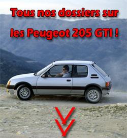 Combien de voitures depuis l'obtention du permis 205gti10