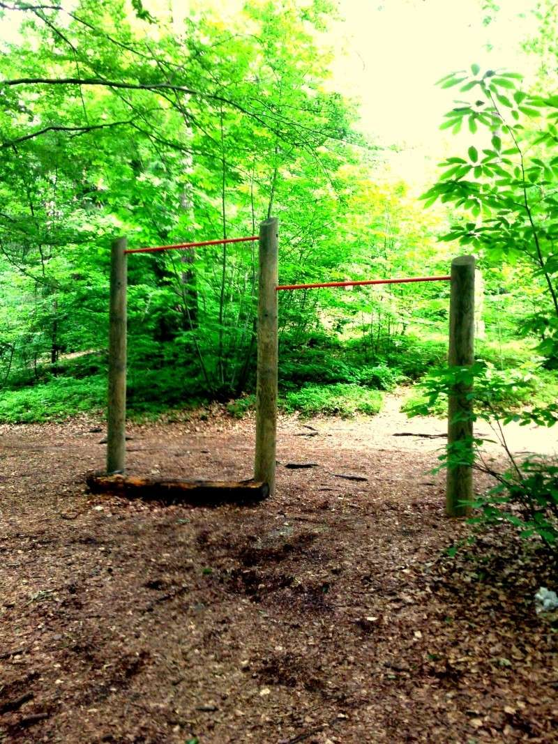 Little park in a near wood :) Foto0111