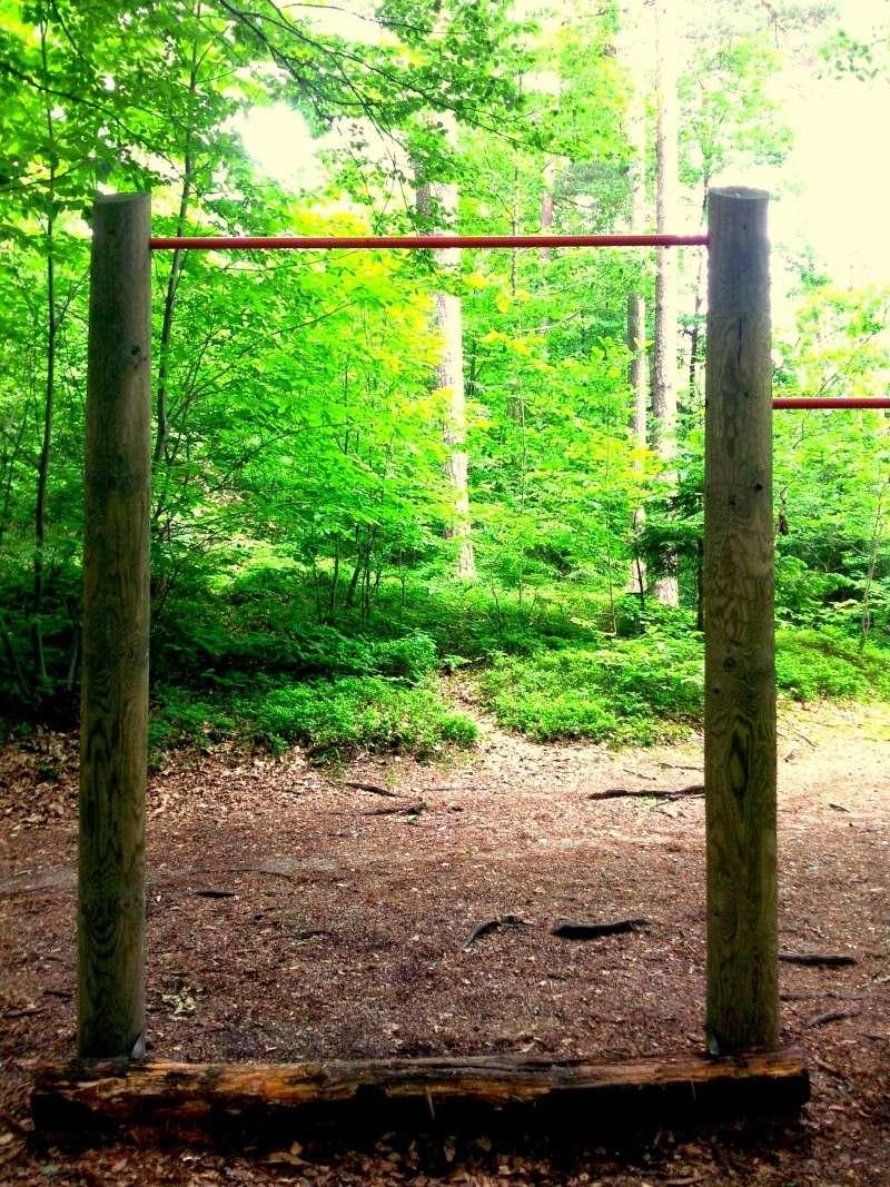 Little park in a near wood :) Foto0112