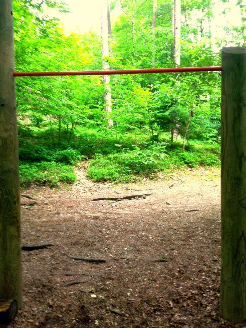 Little park in a near wood :) Foto0113