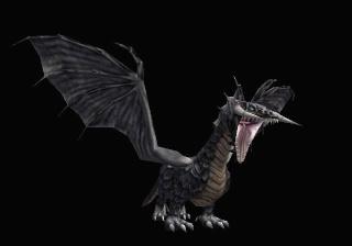 Siliskor Quest Dragon11