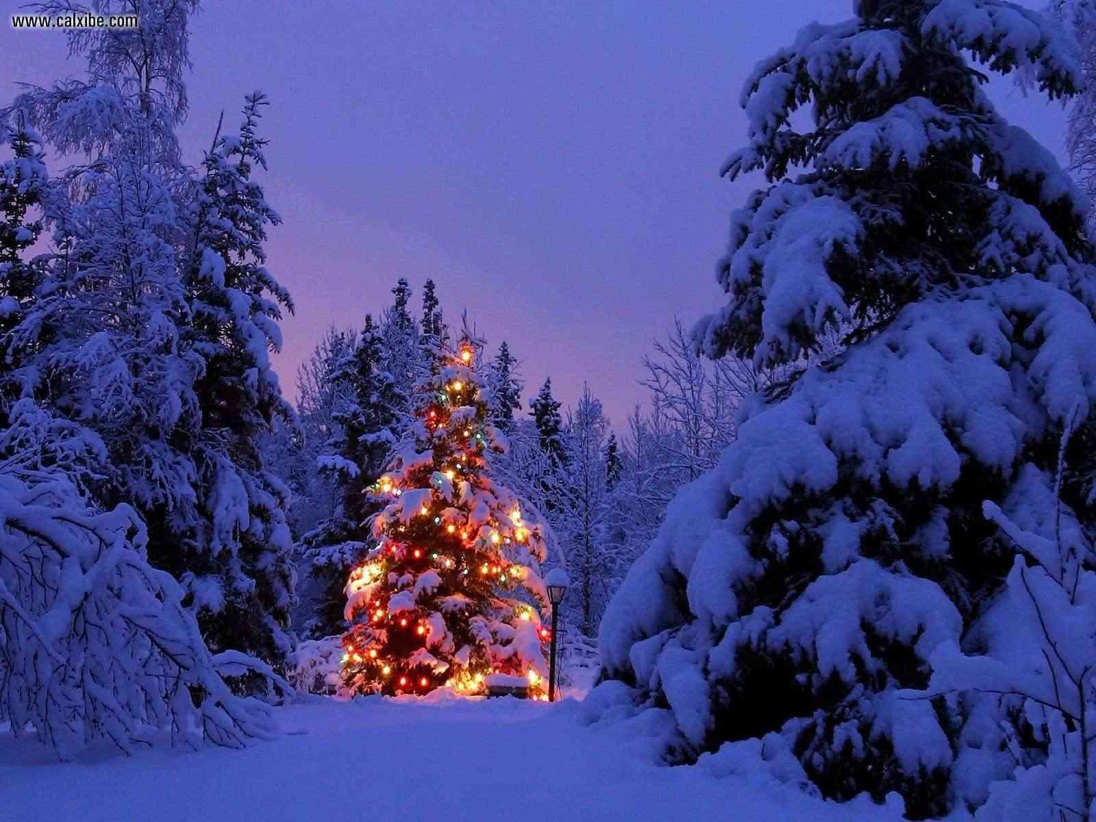 Merry Christmas! Joyful10
