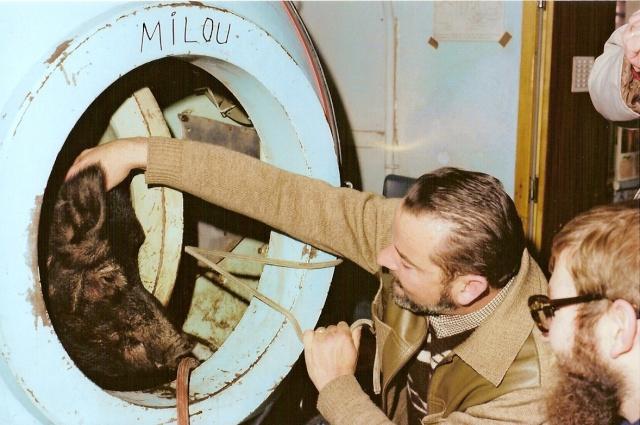 [Plongeurs démineurs] GISMER (Groupe d'Intervention Sous la Mer) Medchi11