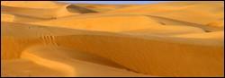 Les dunes succecssives.