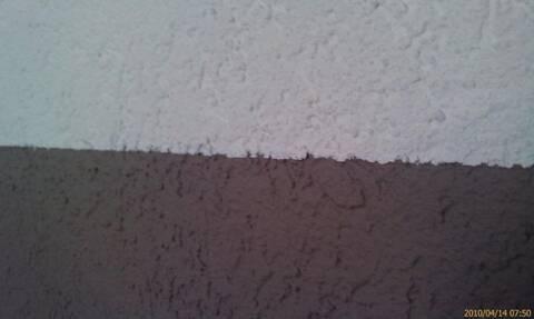 Comment Peindre Sur Crepis D Interieur