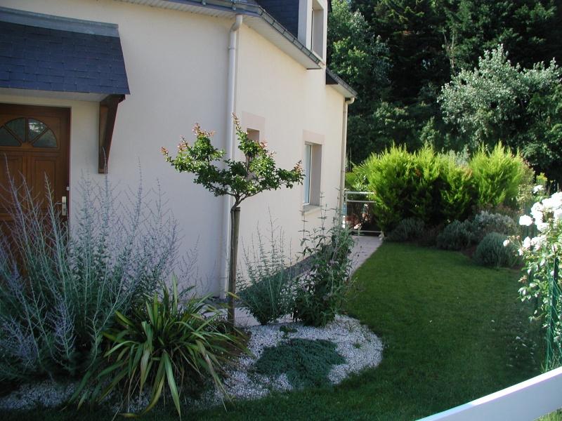 Evolution du jardin quelques années après la construction de la piscine - Page 2 P6260011