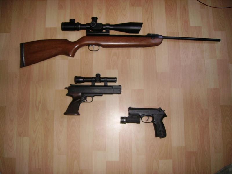 ma collection (naissante) d'armes Pict1743