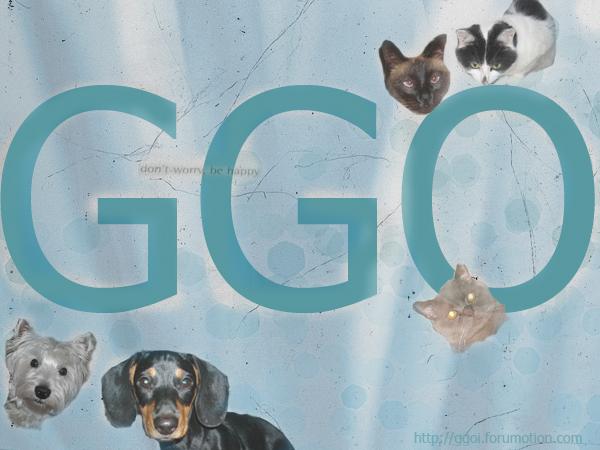 Gyvūnų gerbėjų organizacija