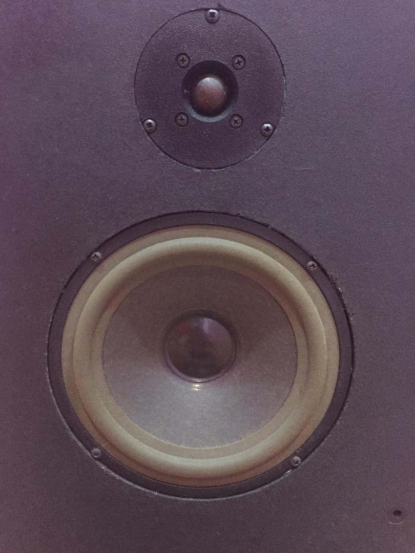AudioNote AN-E Speaker Img-2022