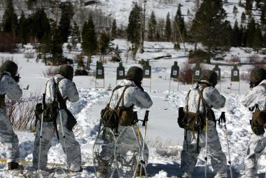 Snow Camouflage Bridge10