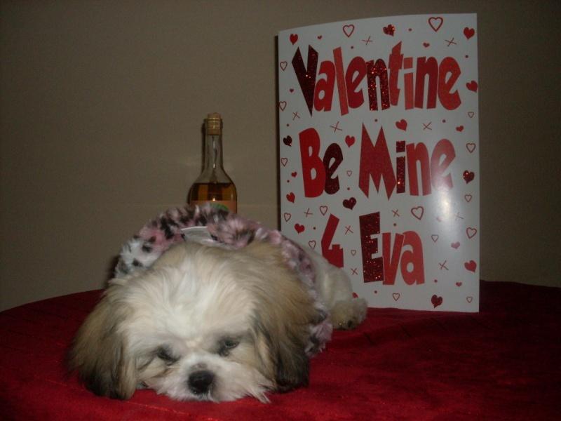 Valentine Album Vallco10