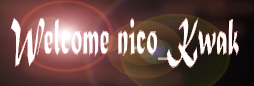 [HS:Espace creations graphique des forumeurs du FCS] Nico_k10