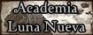 Academia Luna Nueva 232bot10