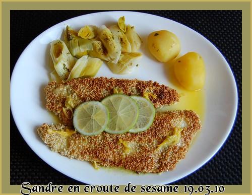 Filets sandre en croûte de sésame Sandre10