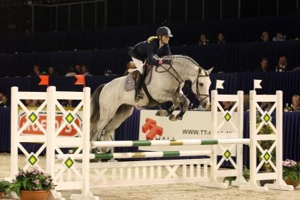 Sport Horses World