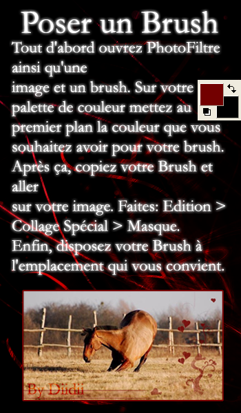 Poser des Brushs Brush-10