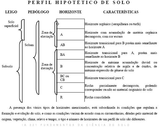 Solos: Gênese e Estrutura Perifl10