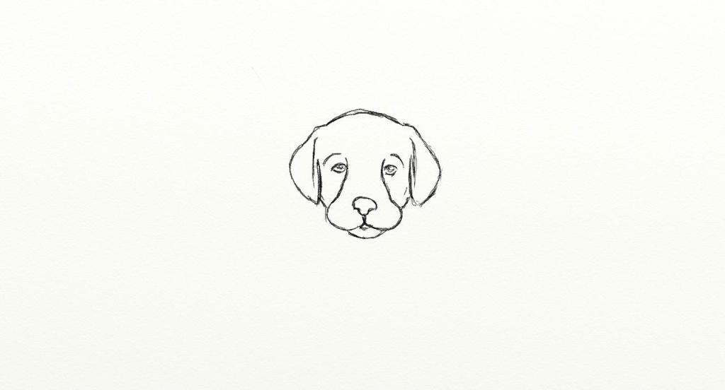 tete de chien Chien_14